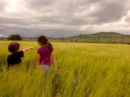 Appel à projet : Épanouissment et éducation à la nature