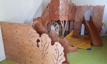 Don structure de motricité – 92270 Bois Colombes